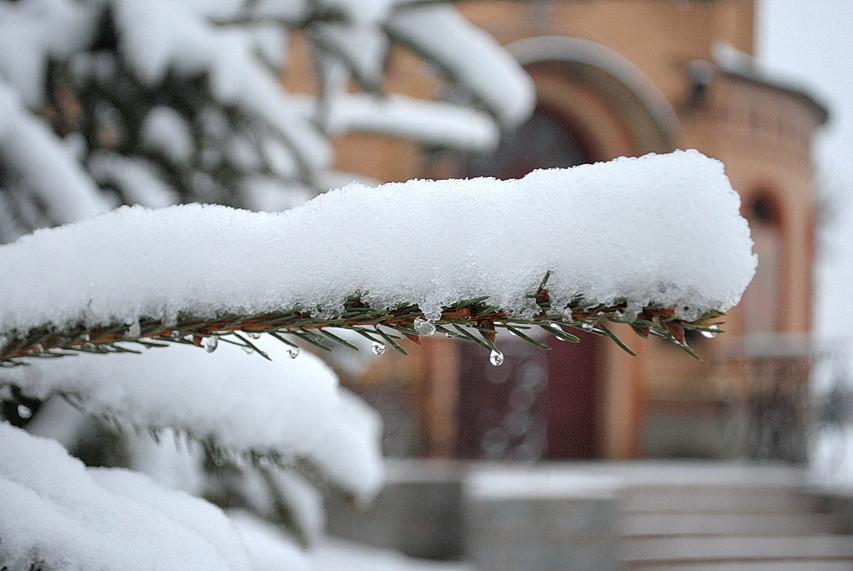 Ямпіль добряче притрусило снігом