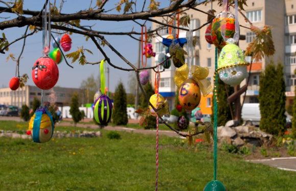 В Ямполі розквітло Великоднє дерево