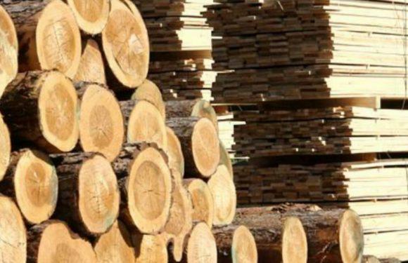 🔴 Середино-Будський лісгосп хоче стягнути з ямпільського підприємства 60 тисяч гривень