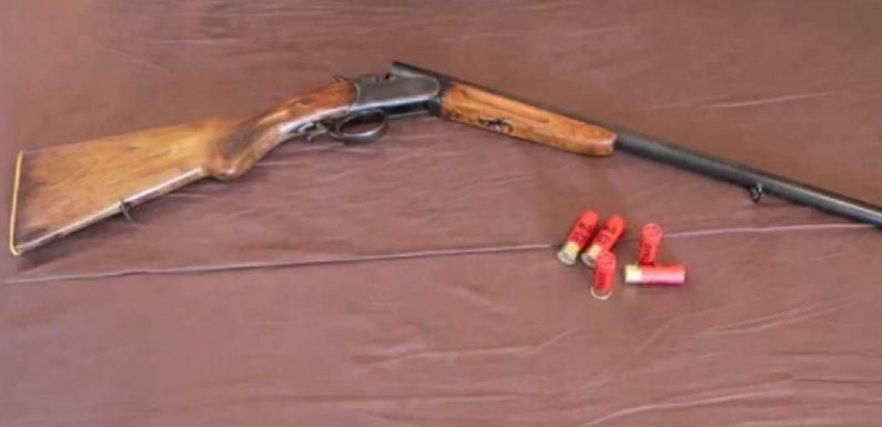 🔴 Суд оштрафував чоловіка, який підстрелив собаку в Свесі