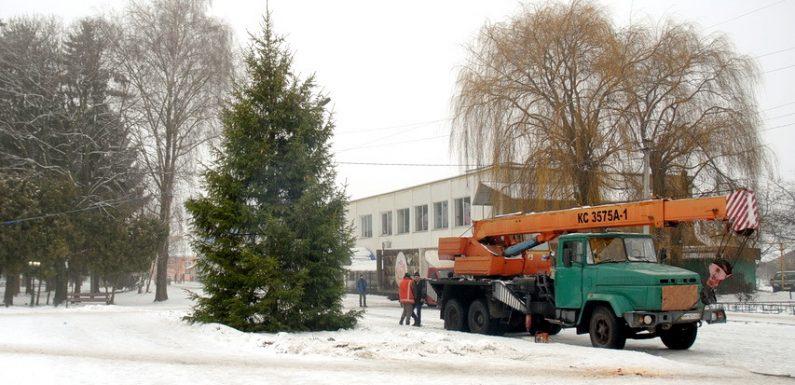 В центрі Ямполя встановили новорічну ялинку