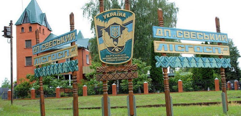 З Свеського лісгоспу намагаються стягнути понад 650 тисяч гривень за незаконну рубку дерев на території Дружбівської ОТГ