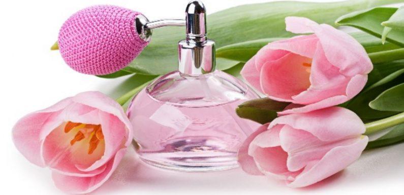 Где заказать лучшие ароматы для женщин?