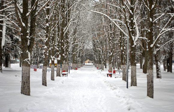 Циклон принесе на Ямпільщину снігопади та сильні морози