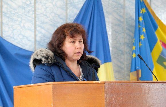 За Ростовом, Ольгиним та Прудищем пропонували закріпити старосту с. Імшана, але більшість депутатів виступили проти