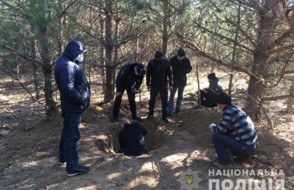 На Сумщині замовники незаконного порубу дерев вбили виконавця