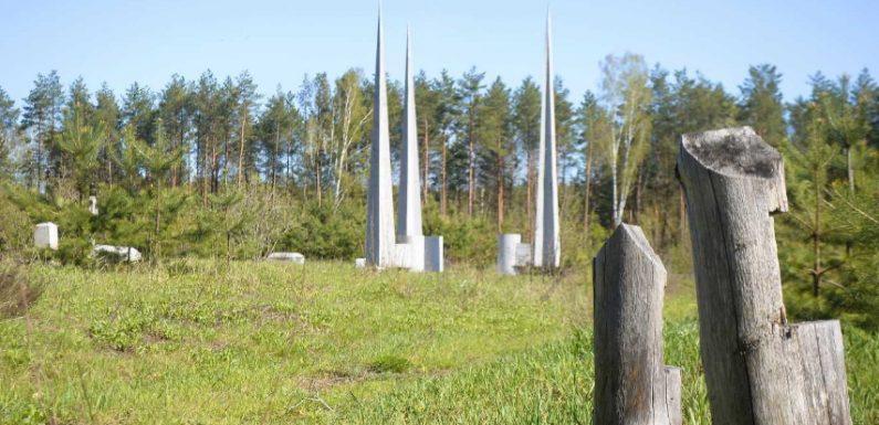 Память на продажу: несколько лет назад на братской могиле в Белице вырезали сосны