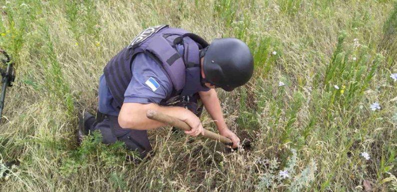 Неподалік Степного знайшли два артснаряди та мінометну міну