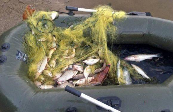 Незаконна риболовля обійдеться орлівчанину більш ніж в 5,5 тисяч гривень