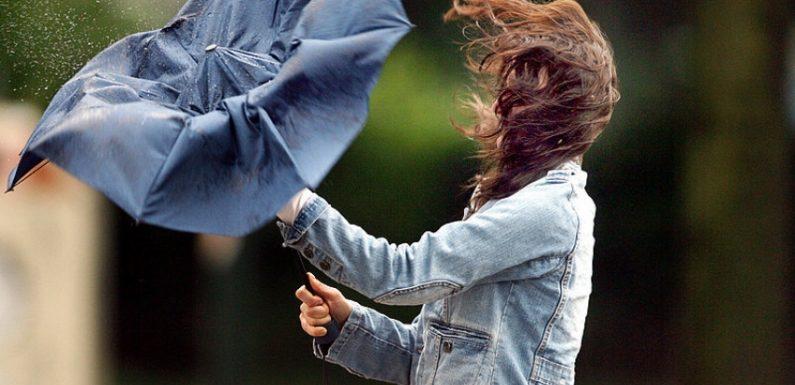 Ямпільчан попереджають про сильні пориви вітру