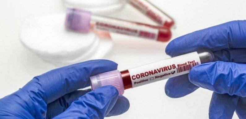 На Ямпільщині вже 135 випадків коронавірусу