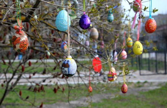 В Ямполі біля дитячого садочку «розквітло» Великоднє дерево