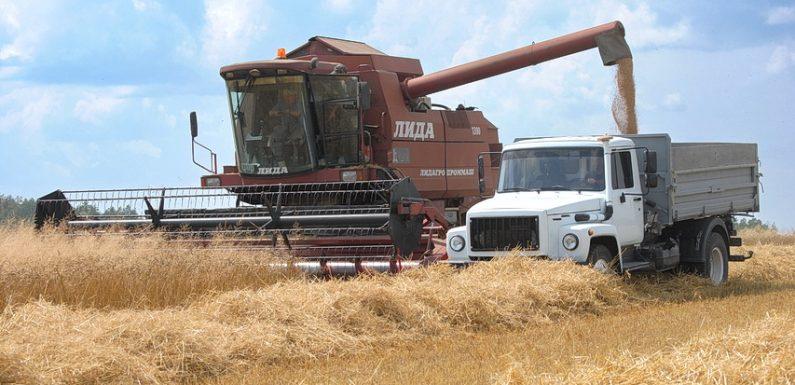 Ямпільські аграрії розпочали збір врожаю зернових культур