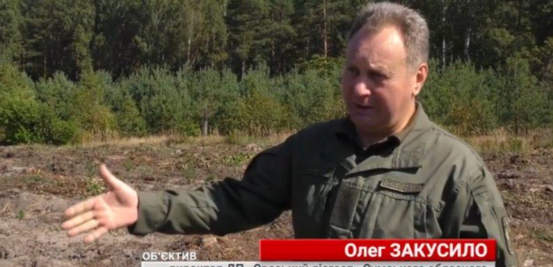 На телеканалі ATV вийшов сюжет про Свеський держлісгосп