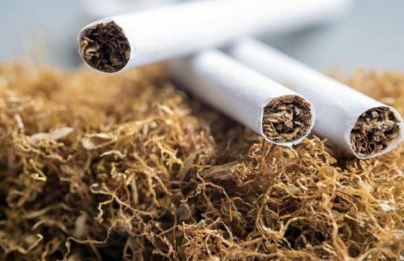 Как выгодно купить сигареты оптом?