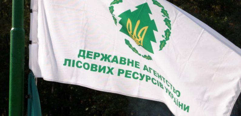 На Ямпільщині відбудуться обласні змагання вальників лісу