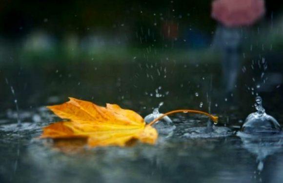 Синоптики попереджають ямпільчан про зниження температури та дощі на початку тижня
