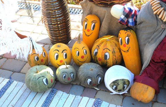 На подвір'ї ямпільського дитячого садочку відкрилась виставка «Гарбузова осінь» (фоторепортаж)